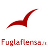 Flugnaflensa.is